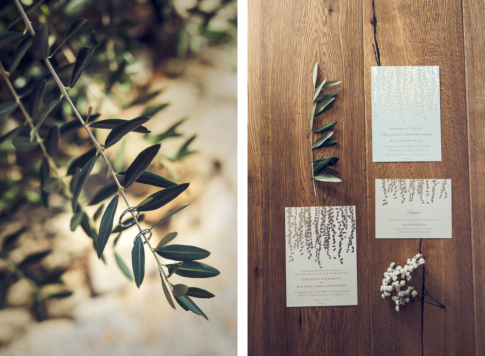 olive tree and stationary