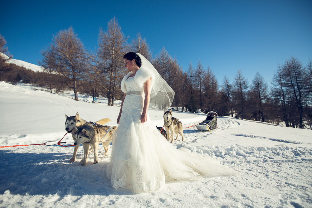 bride with sled dogs